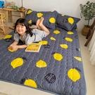 新款可水洗多功能床墊兒童榻米床墊單人學生宿舍軟墊床褥家用墊被【618店長推薦】