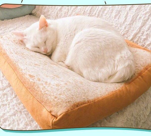 寵物窩墊 - 坐墊 涼墊日本夏天切片吐司坐墊創意面包貓窩貓墊【限時折扣好康八折】