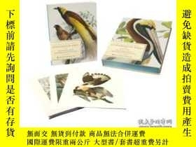 二手書博民逛書店Extraordinary罕見Birds-非凡的鳥Y436638 Paul Sweet; Ameri... S