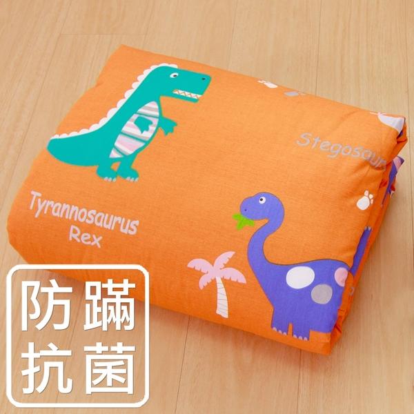 鴻宇 防蟎涼被5x6.5尺 恐龍公園 防蟎抗菌 美國棉授權品牌 台灣製1896