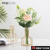 客廳插花花器裝飾品北歐小清新試管玻璃花瓶擺件【探索者】