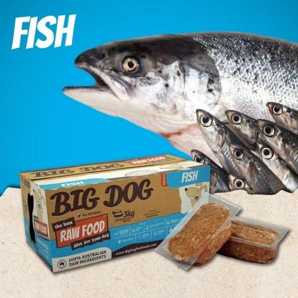 『寵喵樂旗艦店』【免運】(1盒12片入)澳洲BIG DOG(BARF)巴夫《犬用生食肉餅-雙魚口味》