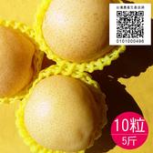 (生產追溯)竹塘黃金梨10粒共5台斤-香脆甜的水梨