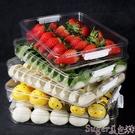 保鮮盒 餃子盒凍餃子家用多層速凍混沌水餃盒冰箱保鮮收納盒專用托盤新款 suger