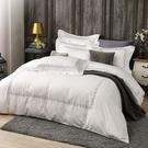 鴻宇 SUPIMA500織 四件式雙人加大薄被套床包組 清雅春芽 刺繡白M2657