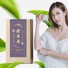 薄霧金萱茶 微米茶 (玉米纖維茶包/台灣茶) 【新寶順】