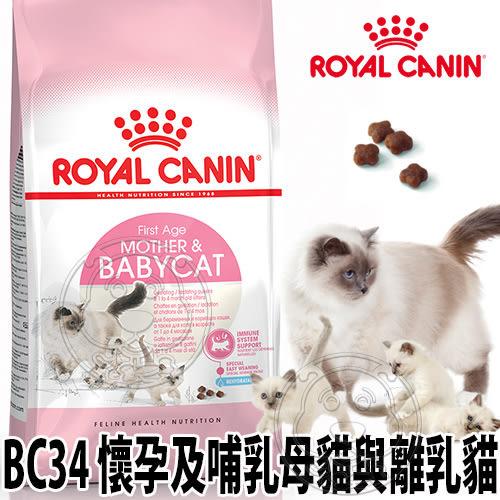 【培菓平價寵物網】法國皇家》BC34離乳貓飼料400g