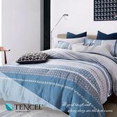 天絲床包兩用被四件式 雙人5x6.2尺 淺酌【BE4105950】100%頂級天絲 萊賽爾  BEST寢飾