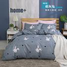 【BEST寢飾】雲絲絨 鋪棉兩用被床包組 單人 雙人 加大 特大 均一價 萌灰兔 舒柔棉 台灣製造