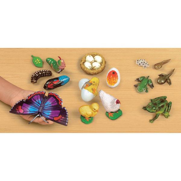 動物生命模型 Lakeshore兒童幼兒教具玩具道具遊戲訓練科學觀察學習模型造型