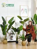 大型北歐仿真植物落地天堂鳥盆景室內裝飾假盆栽綠植擺件旅人蕉樹【名創家居生活館】