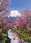 【拼圖總動員 PUZZLE STORY】富士山-櫻花 義大利/Clementoni/1000P