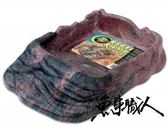ZOO-MED 美國【超大型斜坡水盤 (32cm*23cm)】水龜.蟆顛.青蛙.蟾蛛等可用 魚事職人