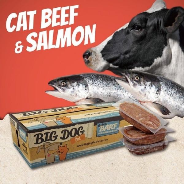 『寵喵樂旗艦店』【1盒12片入】澳洲BIG DOG(BARF)巴夫《貓用生食肉餅-牛鮭口味》