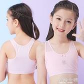 女童內衣發育期純棉抹胸小背心9-10歲13大童文胸12小學生女孩 海角七號