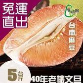 普明園. 預購-嚴選台南麻豆40年老欉紅柚(5台斤/箱)【免運直出】