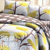 床包組/防蹣抗菌-單人床包組/猴子樂園/美國棉授權品牌-[鴻宇]台灣製-1796