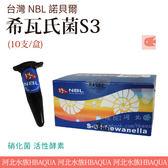 [ 河北水族 ]  台灣 NBL 諾貝爾 【 希瓦氏菌S3 (10支/盒)】S3 硝化菌 活性酵素