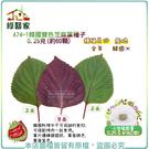 【綠藝家】A74-1韓國雙色芝麻葉種子0...