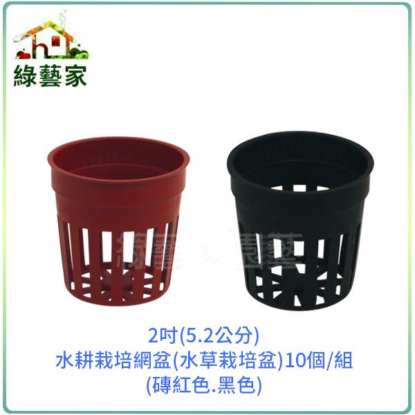 【綠藝家】2吋(5.2公分)水耕栽培網盆(水草栽培盆.定植籃)10個/組