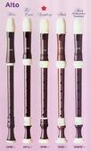 【樂器館】AULOS 509B 中音直笛 日本製