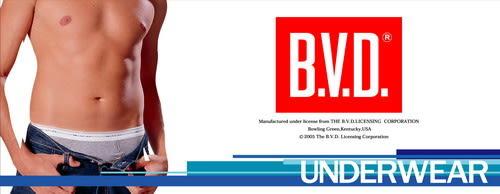 《BVD》B.V.D. 舒活低腰平口褲  M~LL《型男必備》