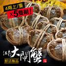【屏聚美食】肥美鮮活江南大閘蟹5隻組(4兩上/隻)_免運