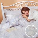 床包 / 雙人加大【瓦勒莉】含兩件枕套 60支天絲 戀家小舖台灣製AAU301