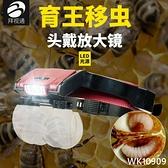 拜視通蜜蜂養蜂移蟲放大鏡頭戴式帶燈led老人年高清兒童學生閱讀看報眼鏡刺繡維修手機鐘 wk10909