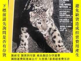 二手書博民逛書店罕見NATIONAL GEOGRAPHIC TRACKING THE Snow Leopard1986 6 Mds