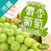 日本麝香綠葡萄 5kg/箱(約10-12串 含箱重)【愛買冷藏】