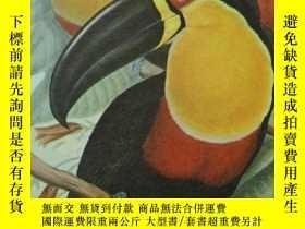 二手書博民逛書店JOHN罕見GOULD - BIRDS OF SOUTH AMERICA《南美洲鳥類圖譜》全插圖大開本 160張彩