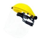 台灣製 防護面罩 防疫面罩 30個入 /組 F002