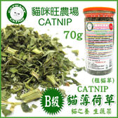 *KING WANG*貓咪旺農場《B級貓草薄荷-粗葉》同進口貓草,幫助貓咪排出毛球-70g