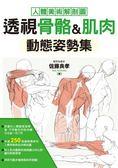 (二手書)透視骨骼、肌肉 動態姿勢集
