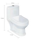 【麗室衛浴】兒童 小朋友專用 小馬桶 A-181-1 尺寸 51.5*29*H52CM 管距18CM