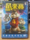 影音專賣店-B07-011-正版DVD【鼠來寶1】-卡通動畫-國英語發音