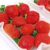 【免運】日本空運草莓禮盒*2組(2小盒/500g/約16-20顆/組)