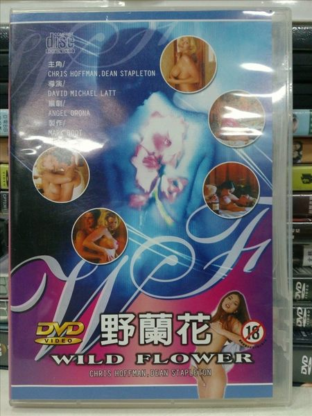 挖寶二手片-E15-001-正版DVD【野蘭花/限制極】-女人跟女人間 又藏有什麼樣的秘密