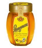 智慧有機體 德國朗尼斯黃金蜂蜜 250g/罐 限時特惠