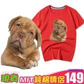 現貨 情侶裝 圓領純棉T恤 MIT台灣製【YC656-8】旺星人大集合 維希拉犬 24小時快速出貨