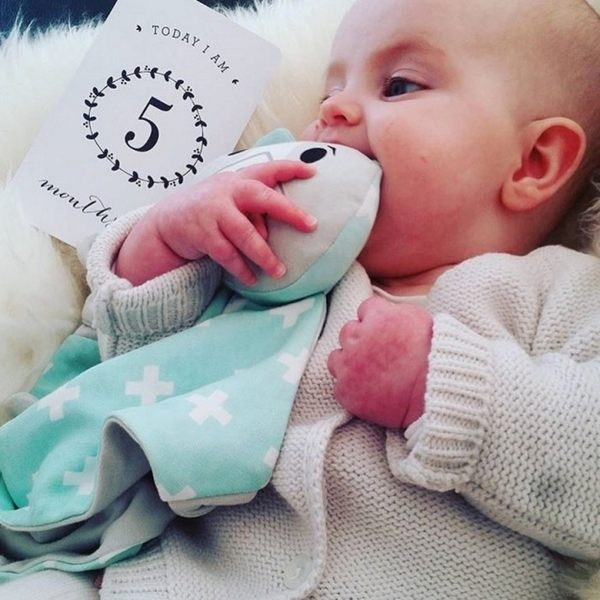 澳洲 Kippins 童趣造型動物有機棉嬰兒安撫巾