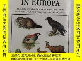 二手書博民逛書店WILDE罕見DIEREN IN EUROPA 歐洲的野生動物 荷蘭語Y19139 REBO PRODUCT