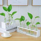 水培小花瓶創意玻璃綠蘿透明小清新水養植物桌面裝飾擺件客廳插花wy