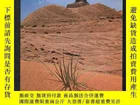 二手書博民逛書店Planet罕見Earth - Arid LandsY36173