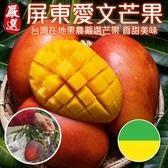 【果之蔬-全省免運】愛文芒果18-20入(10斤±10%含箱)