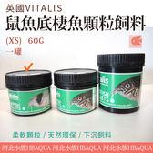 [ 河北水族 ] 英國VITALIS【 鼠魚底棲魚顆粒飼料(XS)  60G 】VS141