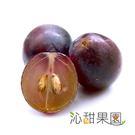 沁甜果園SSN.新社古家御品巨峰葡萄(2.5公斤/箱)﹍愛食網