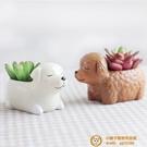 創意可愛卡通花盆小動物多肉花盆兒童房擺件超級品牌【小獅子】