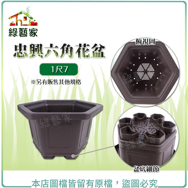 【綠藝家】忠興六角花盆 1尺7(加厚材質)